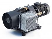 Dry rotary vane vacuum pumps